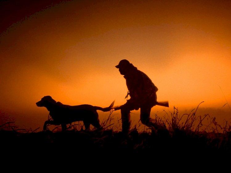 Avcılık Belgesi ve Avlanma izni Nasıl Alınır 2021